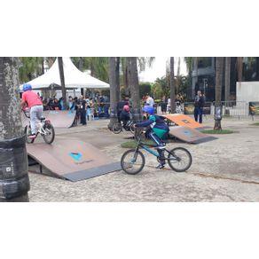 Pista-de-Skate